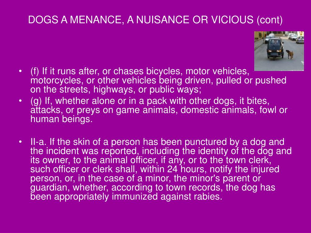 DOGS A MENANCE, A NUISANCE OR VICIOUS (cont)
