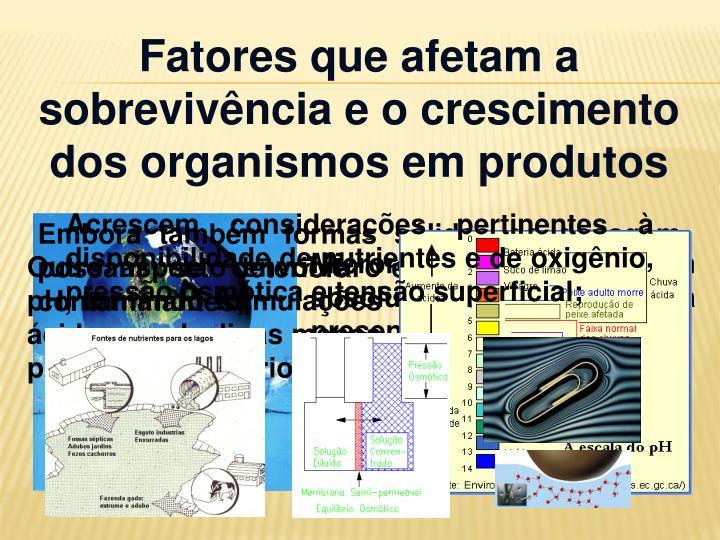 Fatores que afetam a sobrevivência e o crescimento dos organismos em produtos