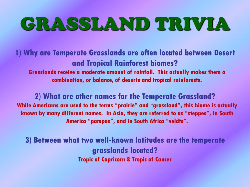GRASSLAND TRIVIA