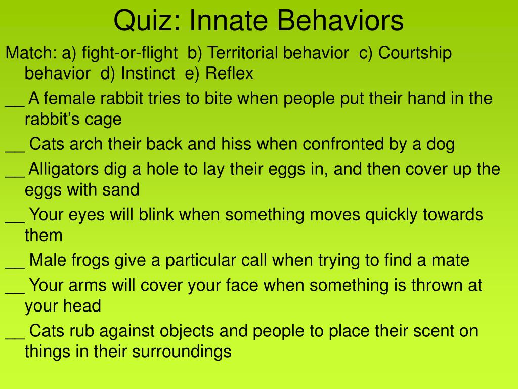Quiz: Innate Behaviors