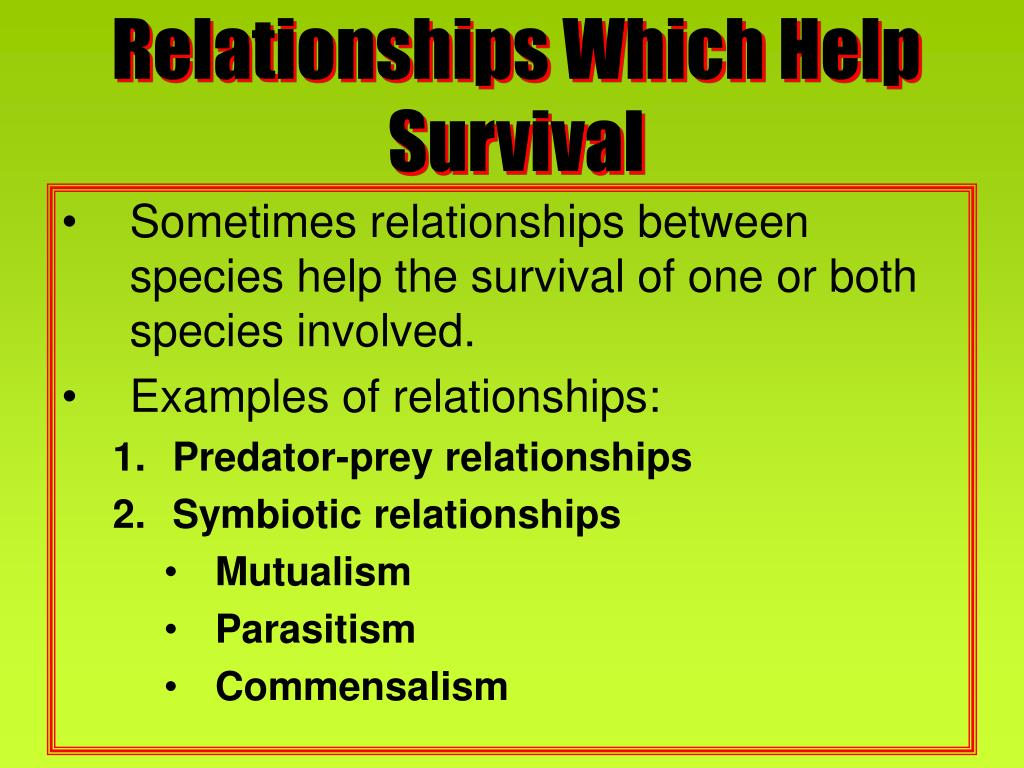 Relationships Which Help