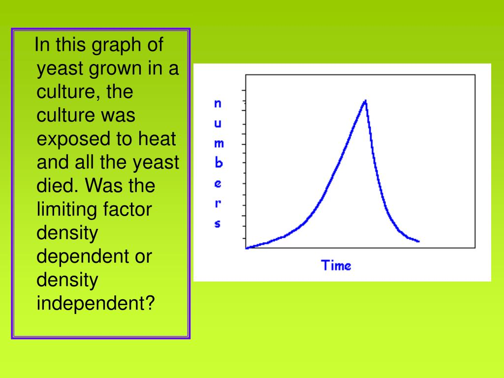 In this graph of yeast grown in a culture, the culture was exposed to heat and all the yeast died. Was the limiting factor density dependent or density independent?