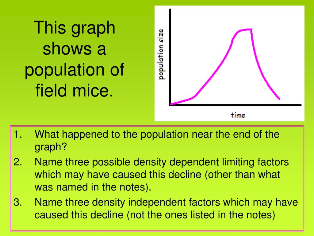 This graph shows a population of field mice.