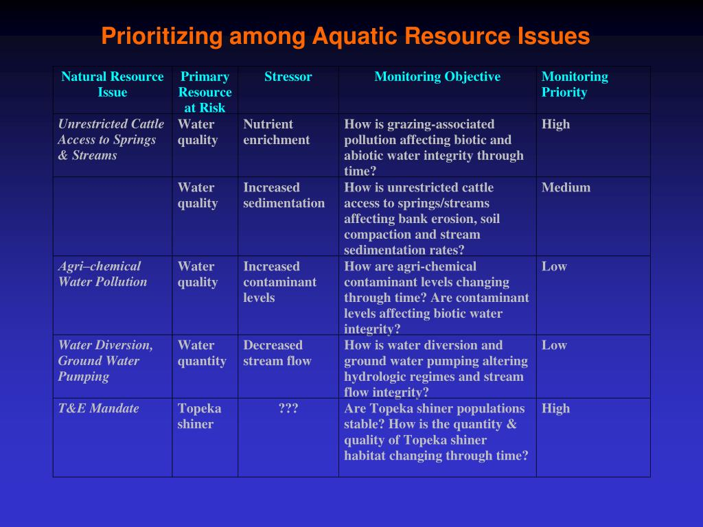 Prioritizing among Aquatic Resource Issues