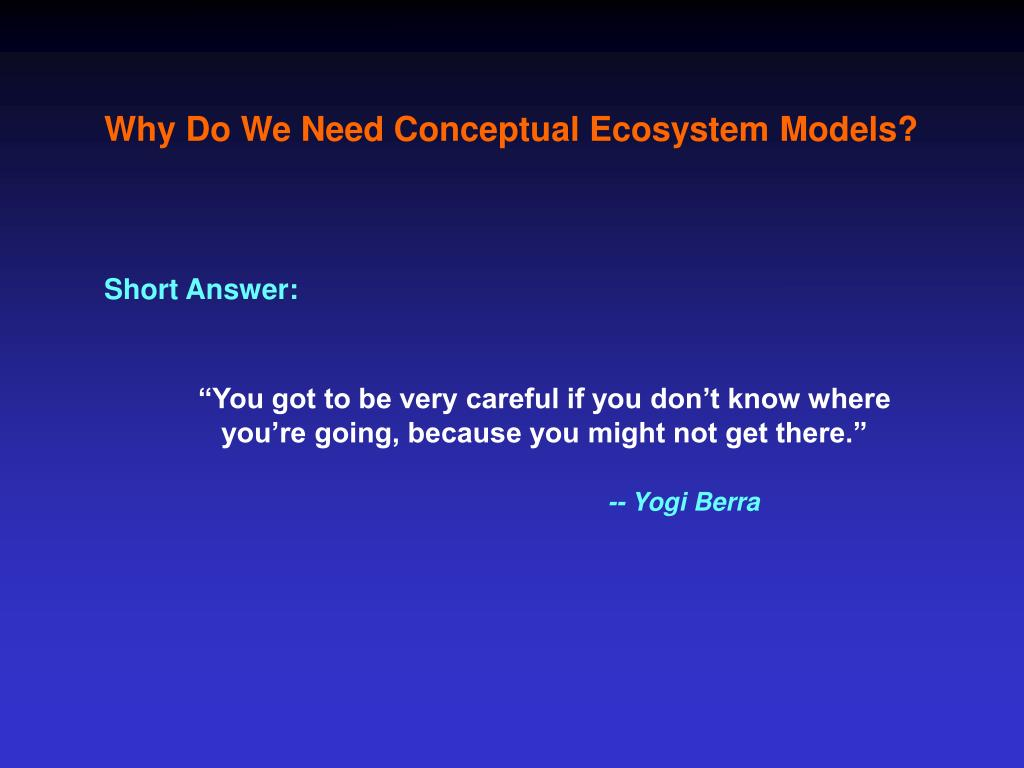 Why Do We Need Conceptual Ecosystem Models?