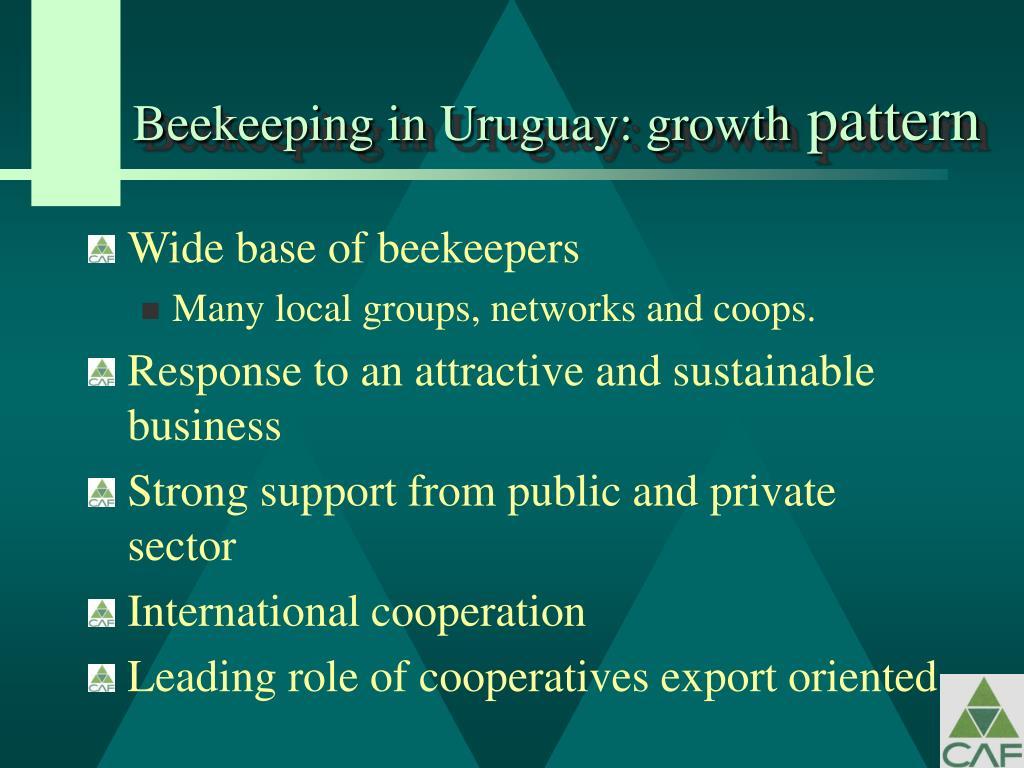 Beekeeping in Uruguay: growth