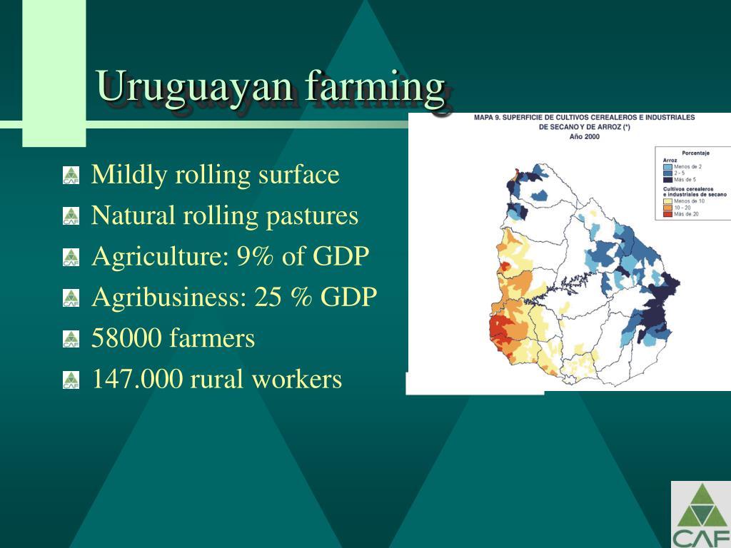 Uruguayan farming