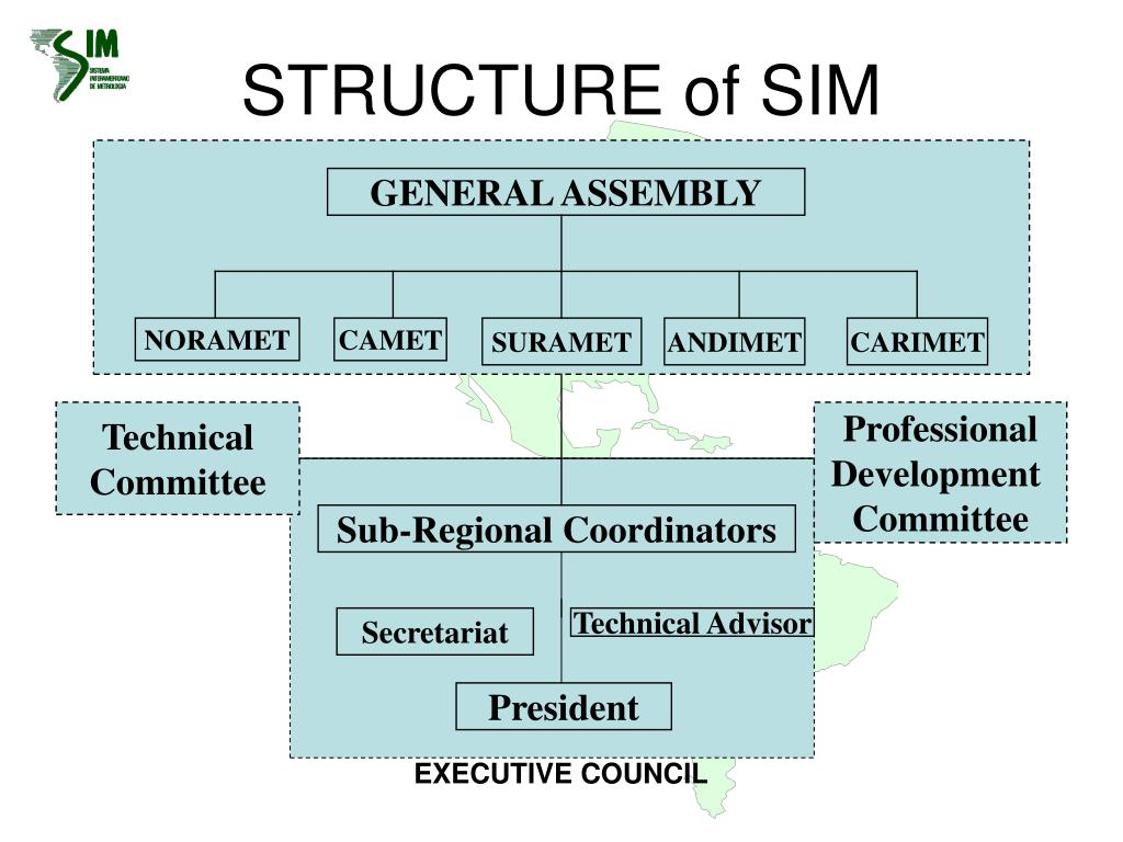 STRUCTURE of SIM