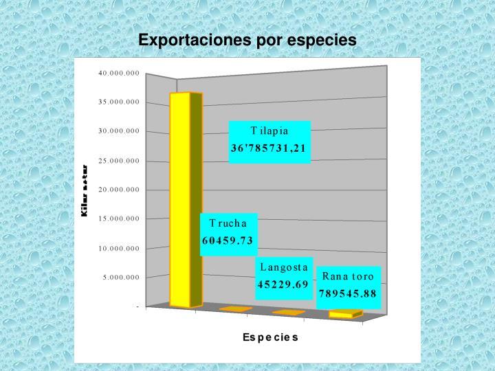 Exportaciones por especies