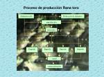 proceso de producci n rana toro