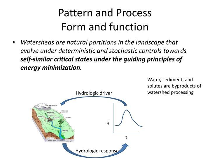 Pattern and Process