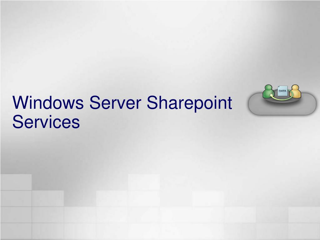 Windows Server Sharepoint Services
