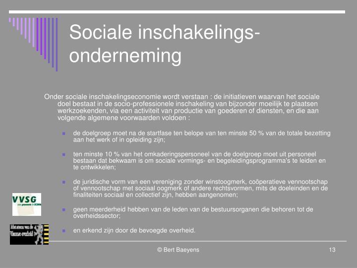 Sociale inschakelings-onderneming