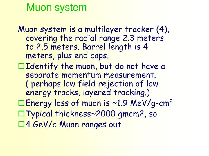 Muon system