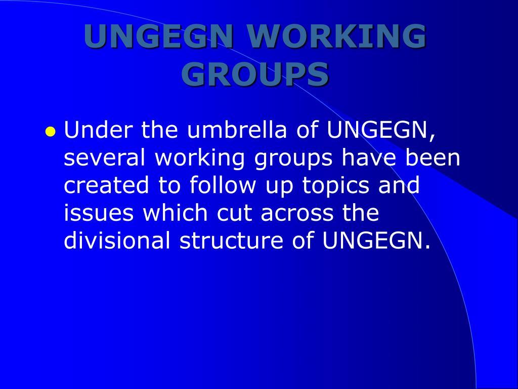 UNGEGN WORKING GROUPS