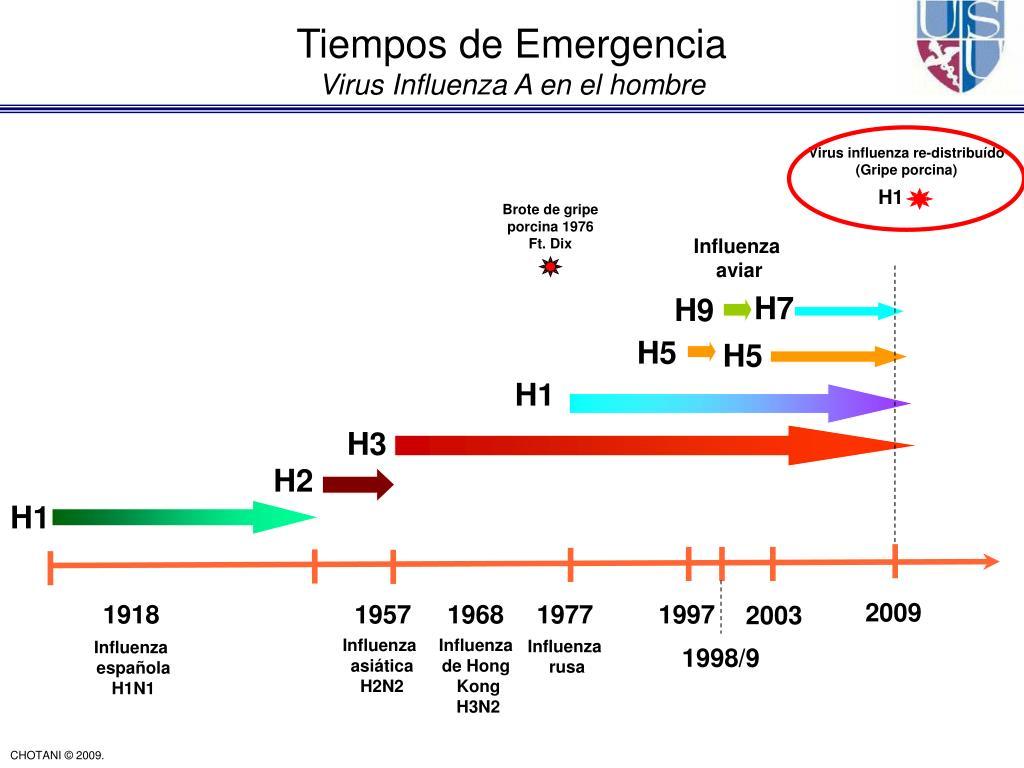 Tiempos de Emergencia