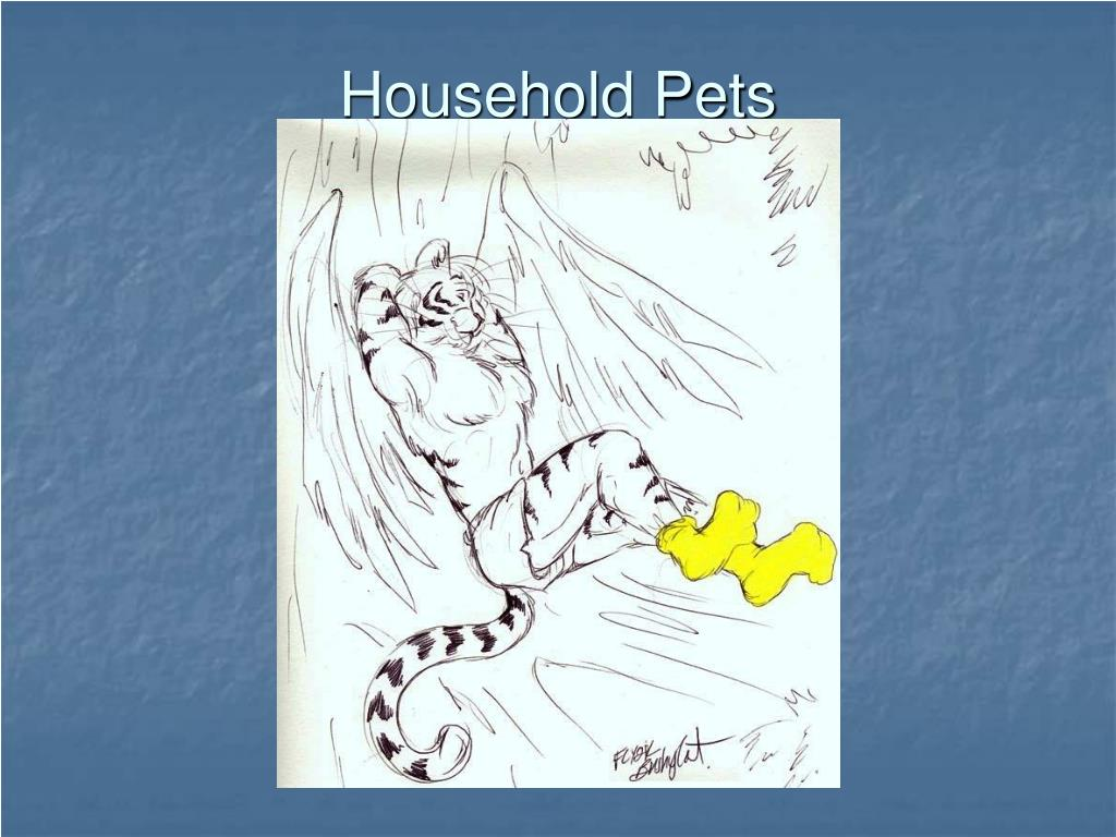 Household Pets