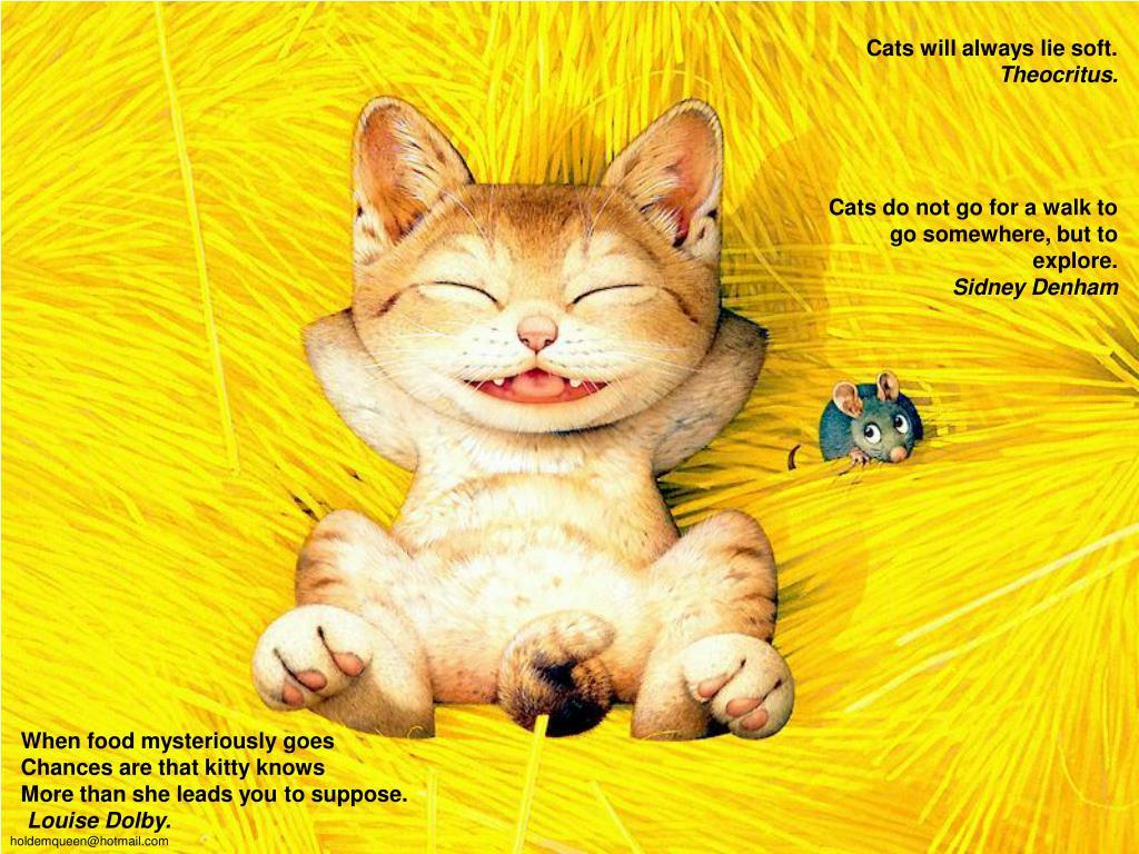 Cats will always lie soft.