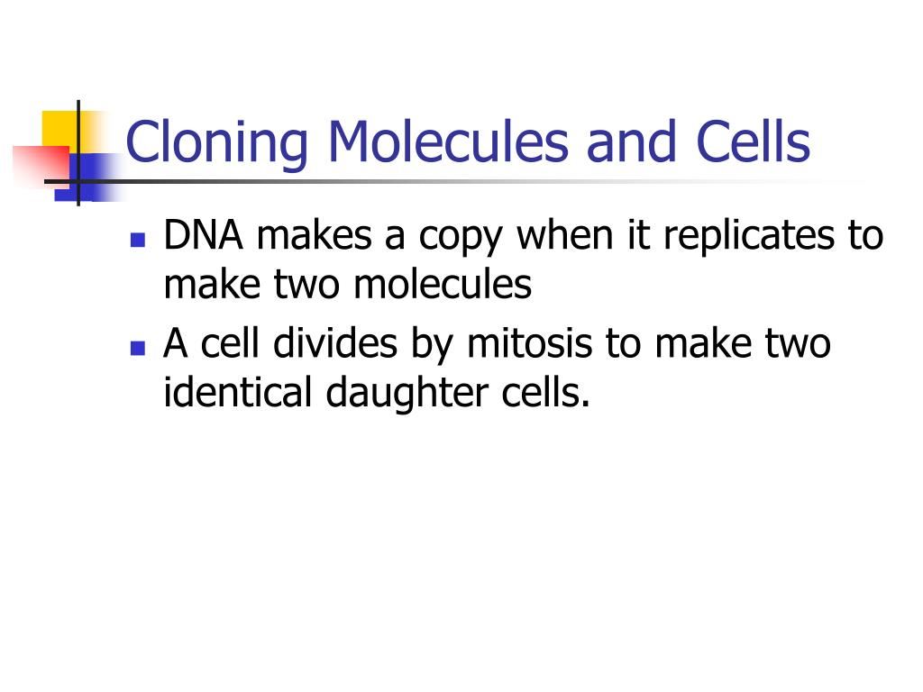 Cloning Molecules and Cells
