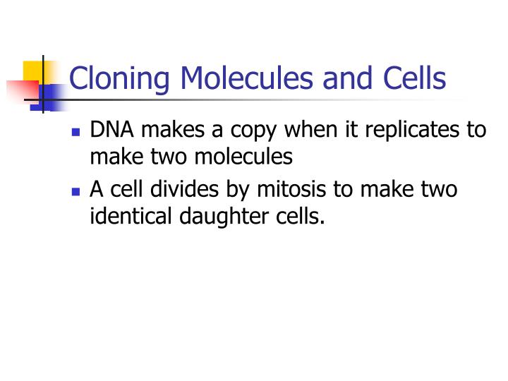 Cloning molecules and cells l.jpg