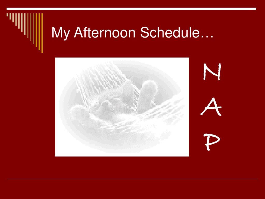 My Afternoon Schedule…
