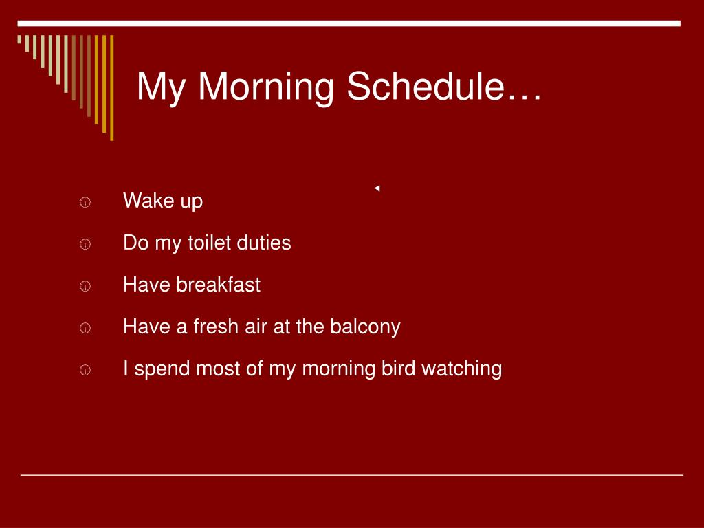 My Morning Schedule…