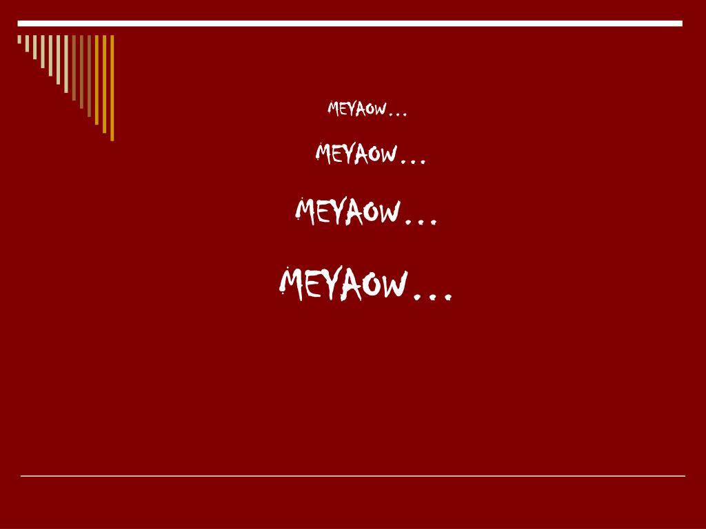 MEYAOW…