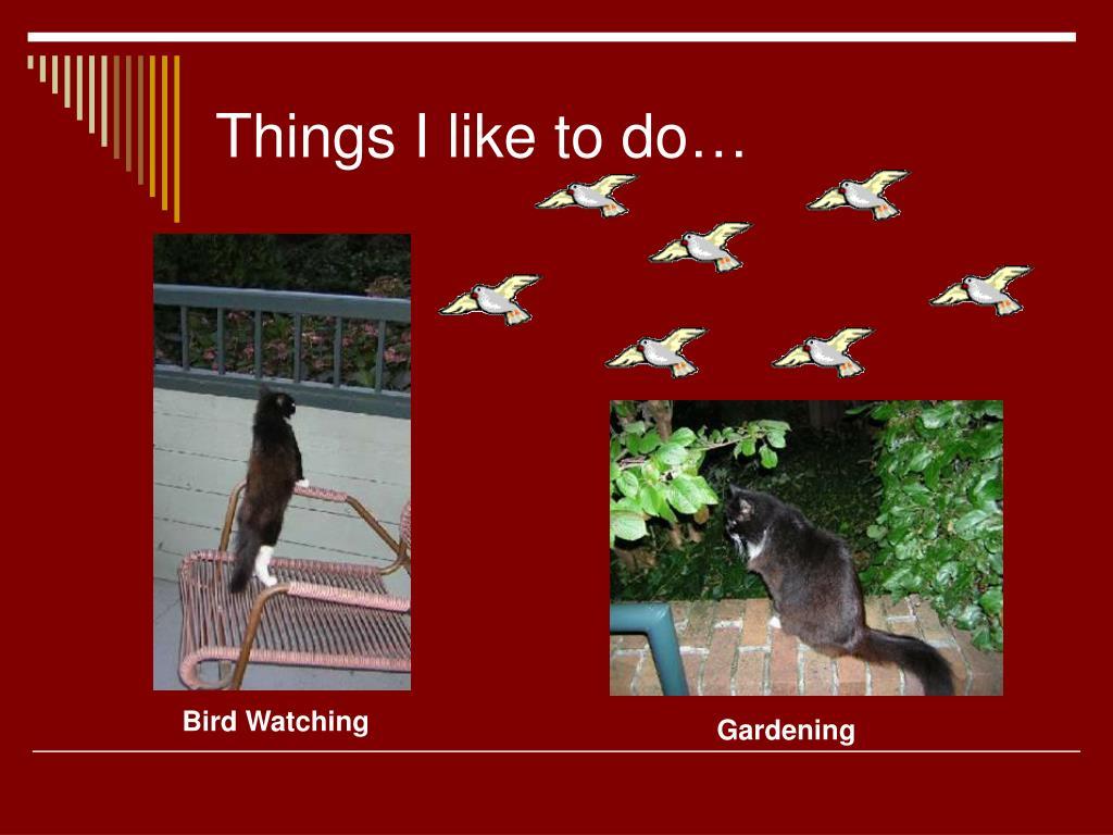 Things I like to do…
