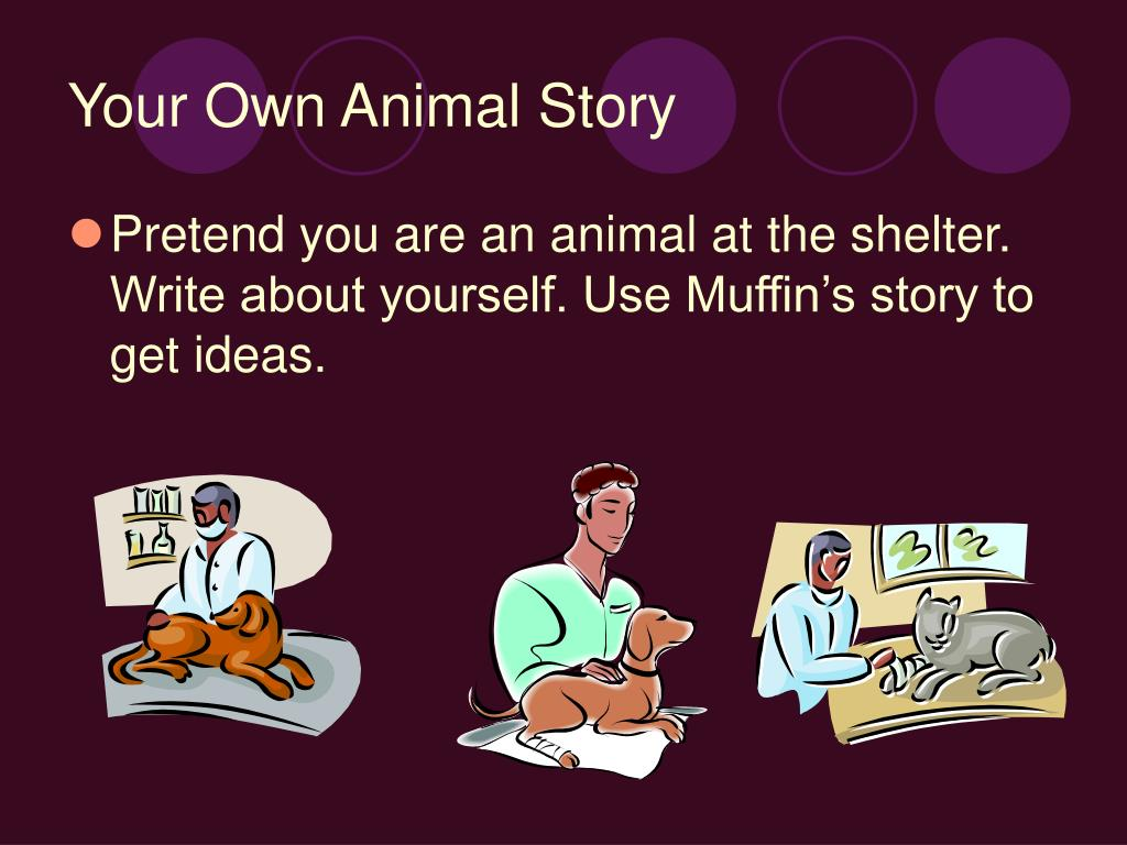 Your Own Animal Story