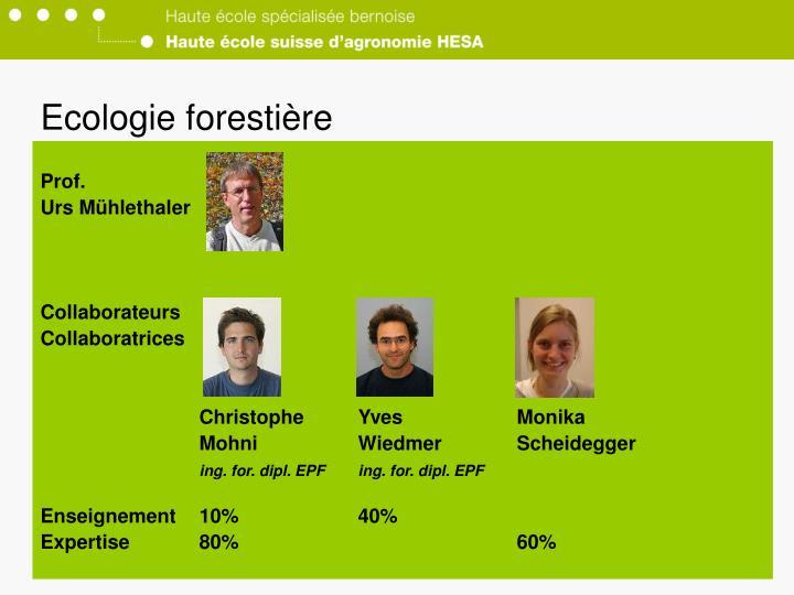 Ecologie forestière