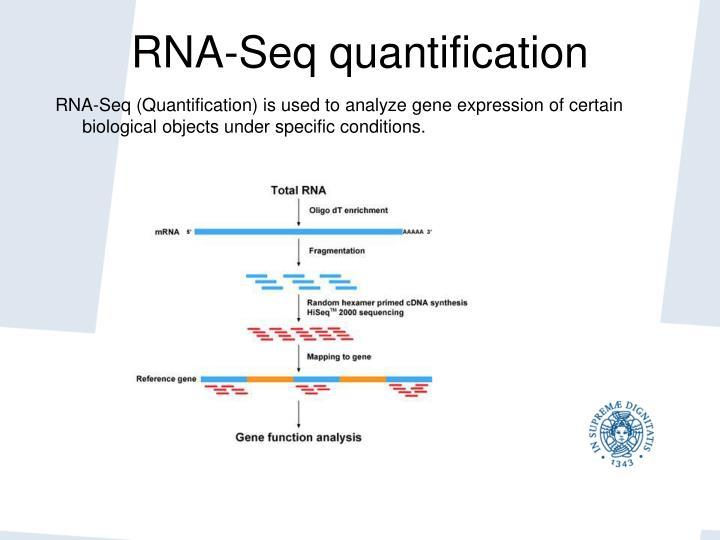 RNA-Seq quantification