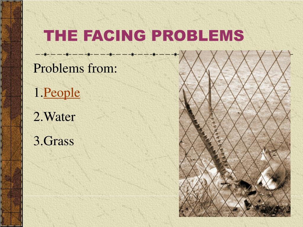 THE FACING PROBLEMS