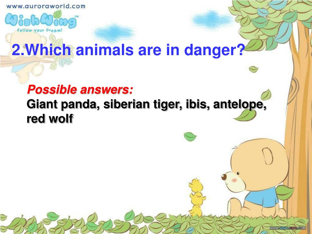 2.Which animals are in danger?