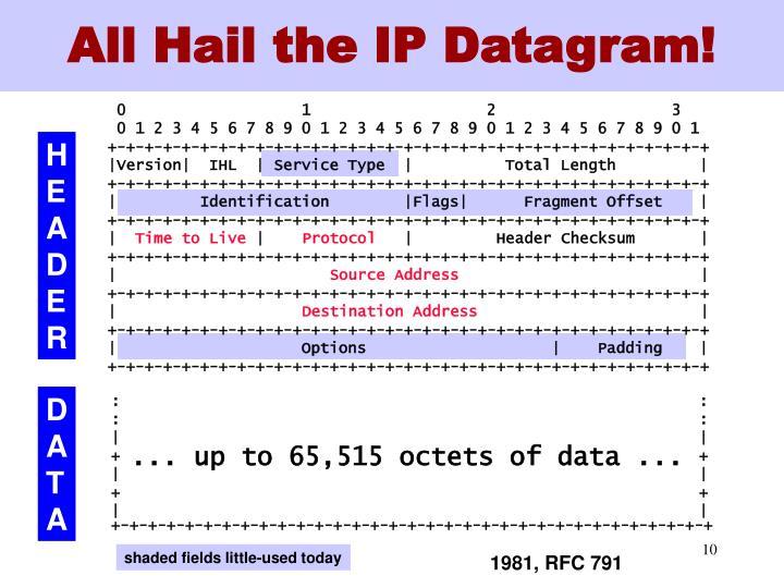 All Hail the IP Datagram!