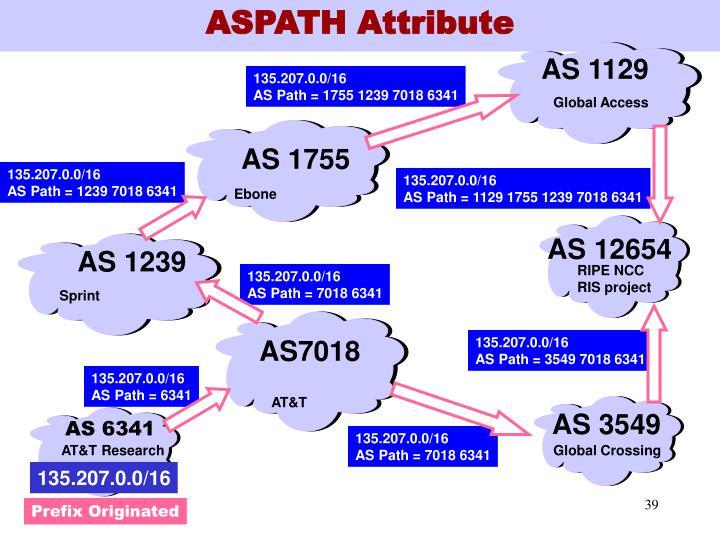 ASPATH Attribute
