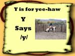 y is for yee haw