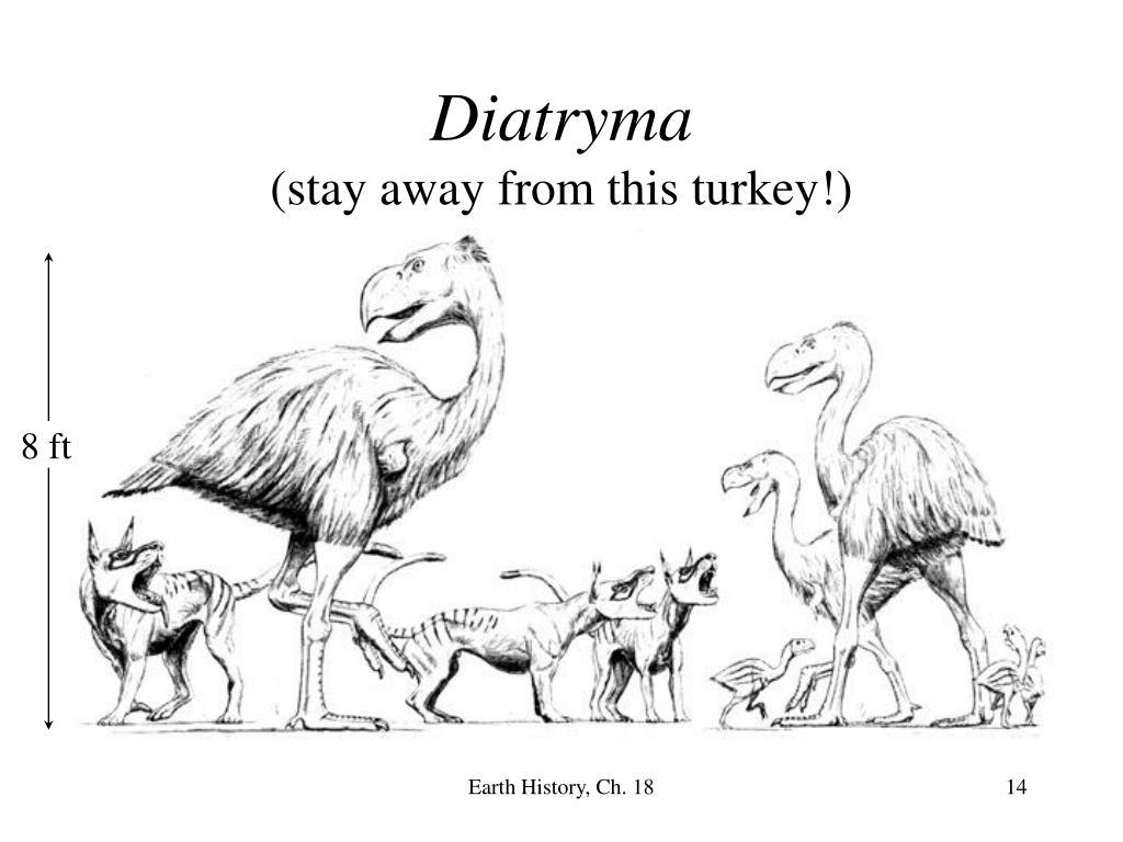 Diatryma