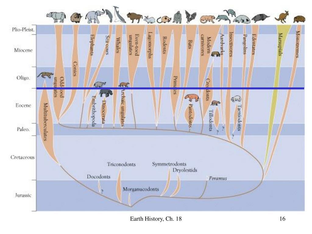 Earth History, Ch. 18