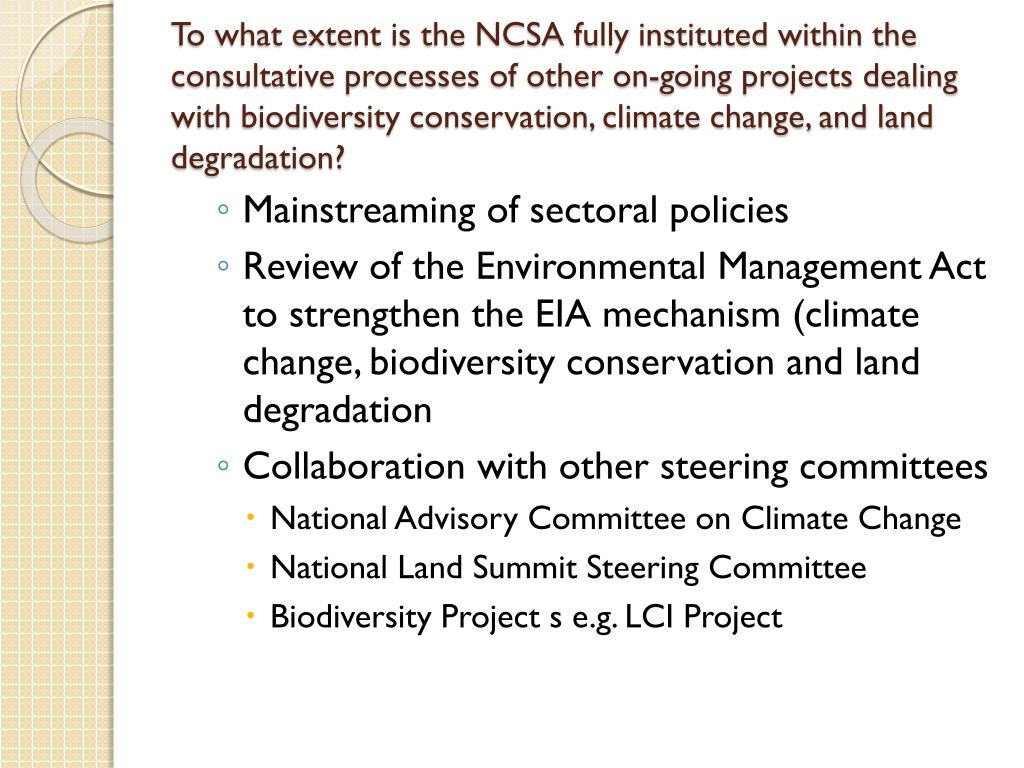 To what extent is the NCSA fully instituted within the consultative processes of other on-going projects dealing with biodiversity conservation, climate change, and land degradation?