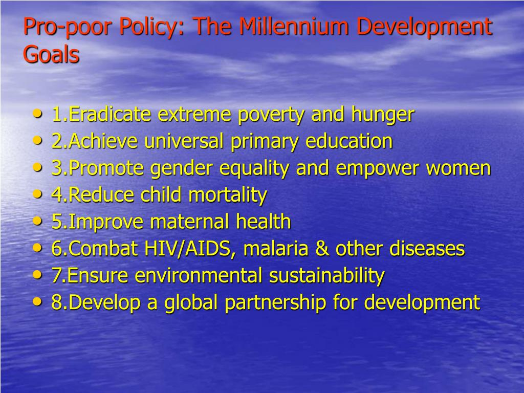 Pro-poor Policy: The Millennium Development Goals