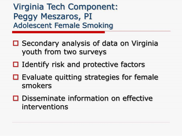 Virginia Tech Component: