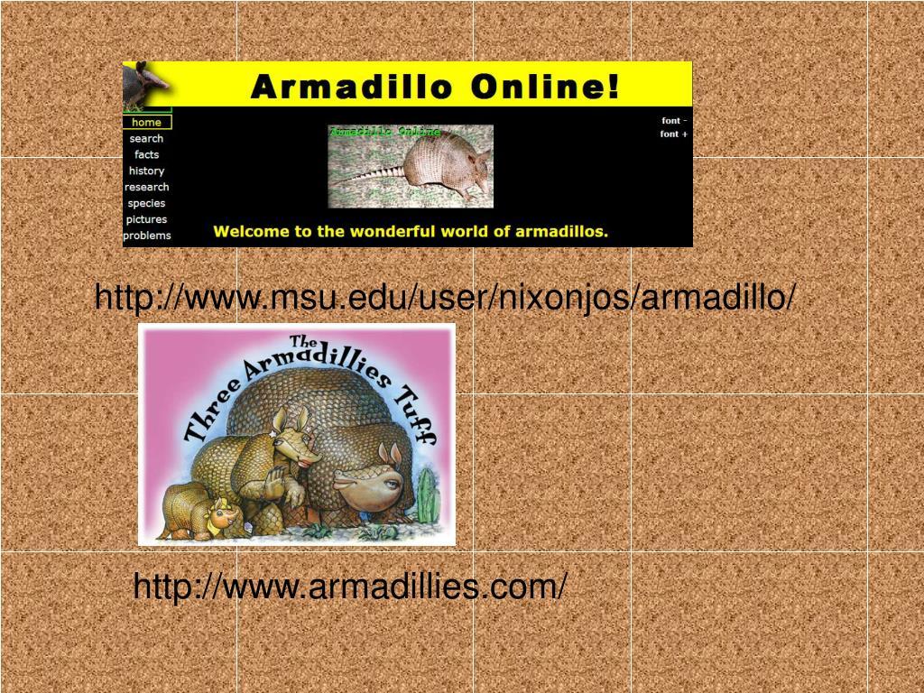 http://www.msu.edu/user/nixonjos/armadillo/