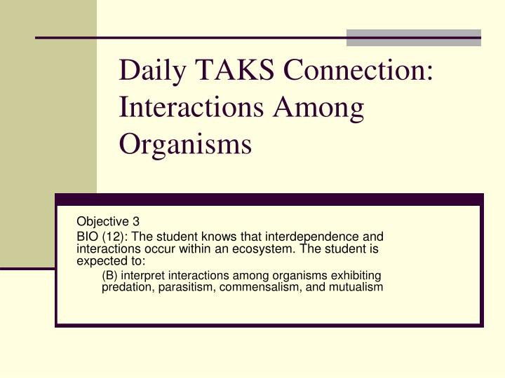 Daily taks connection interactions among organisms l.jpg