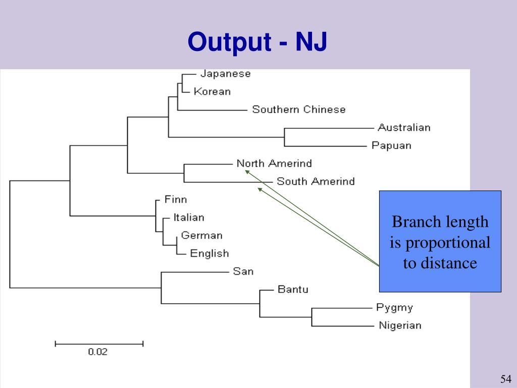 Output - NJ
