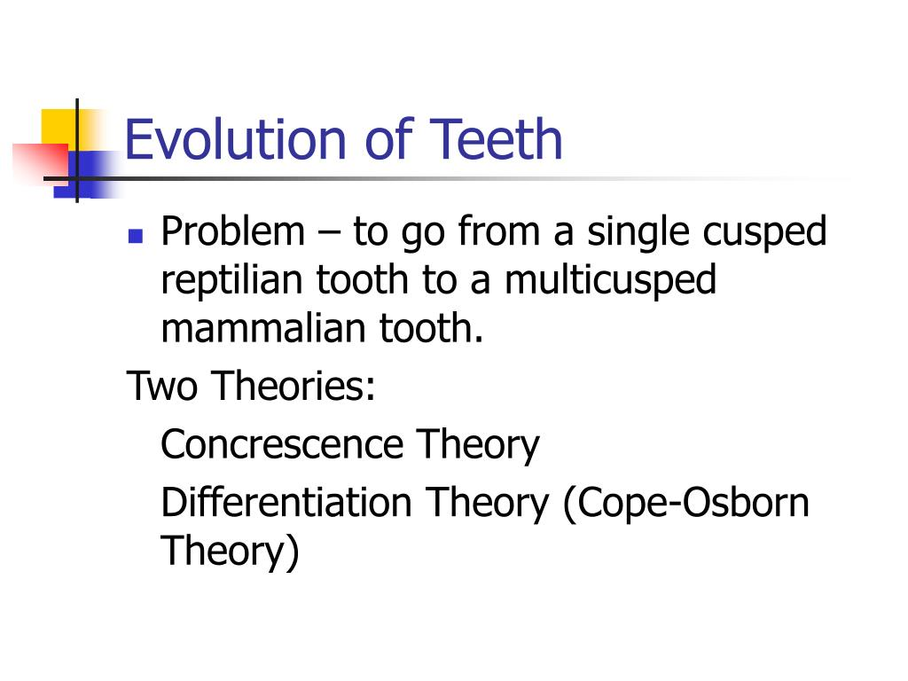 Evolution of Teeth