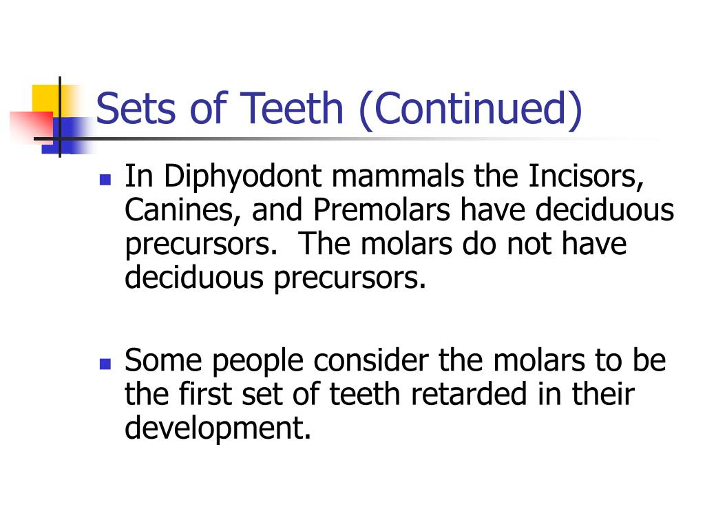 Sets of Teeth (Continued)