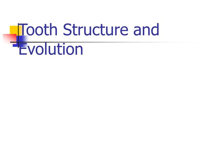Tooth structure and evolution l.jpg