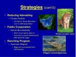 strategies cont d49