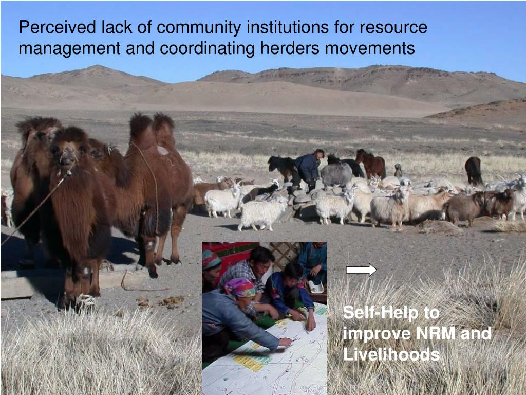 Perceived lack of community institutions for resource management and coordinating herders movements