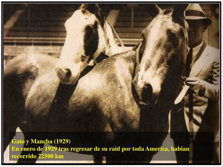 Gato y Mancha (1929)